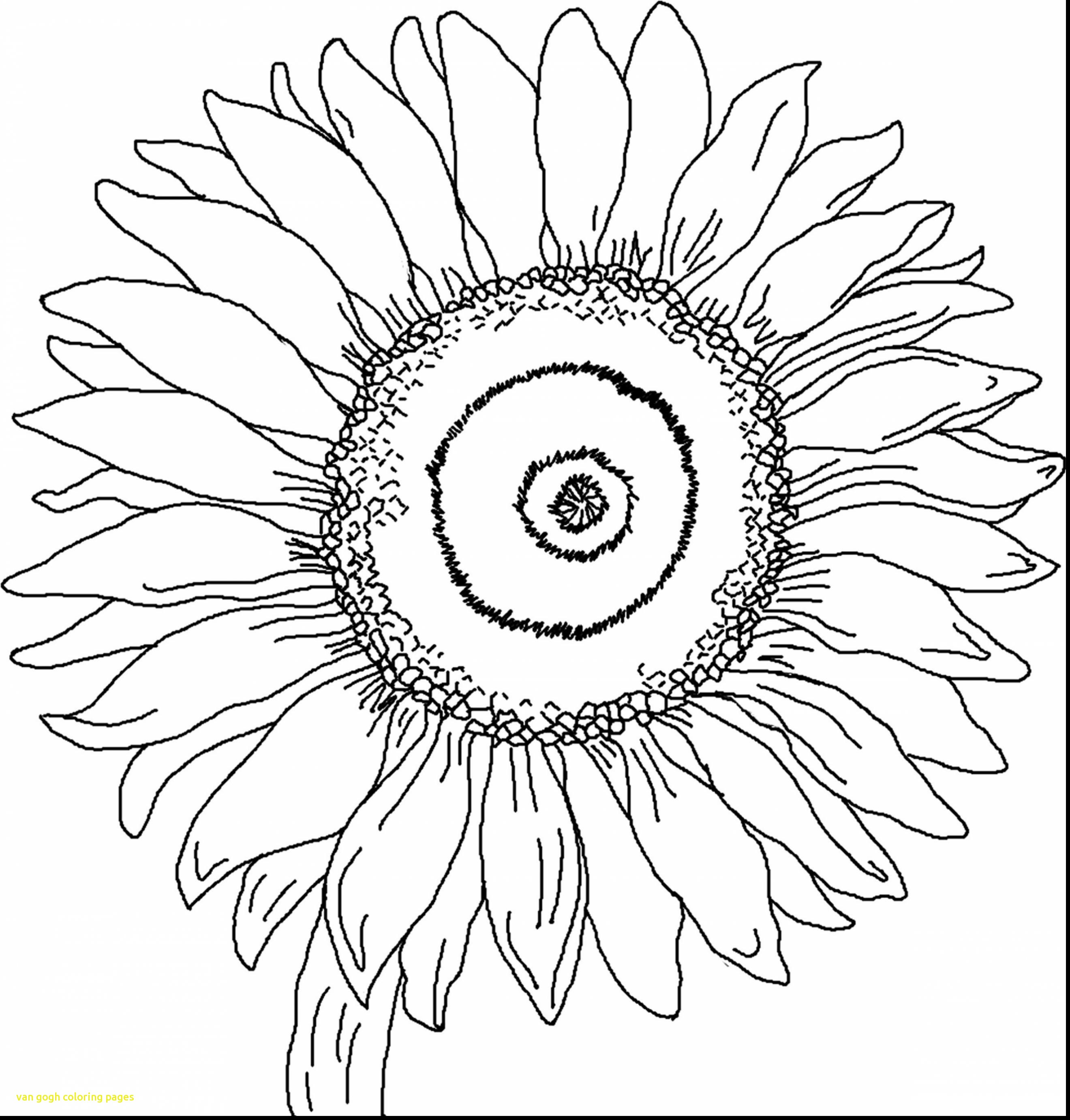Vincent Van Gogh Coloring Pages At Getdrawings Free Download