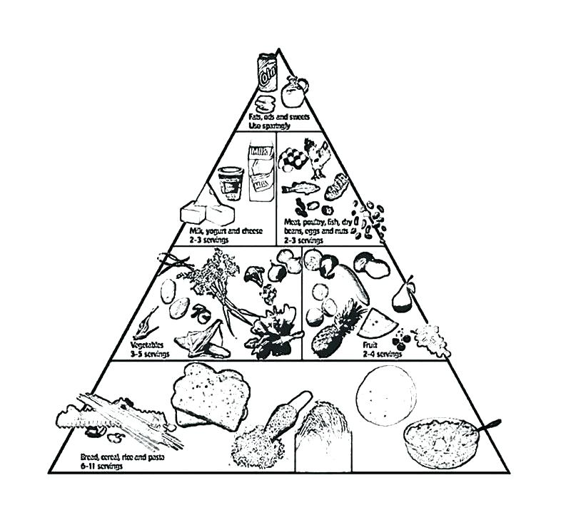 800x743 Food Pyramid Coloring Pages For Preschool Food Coloring Page Food