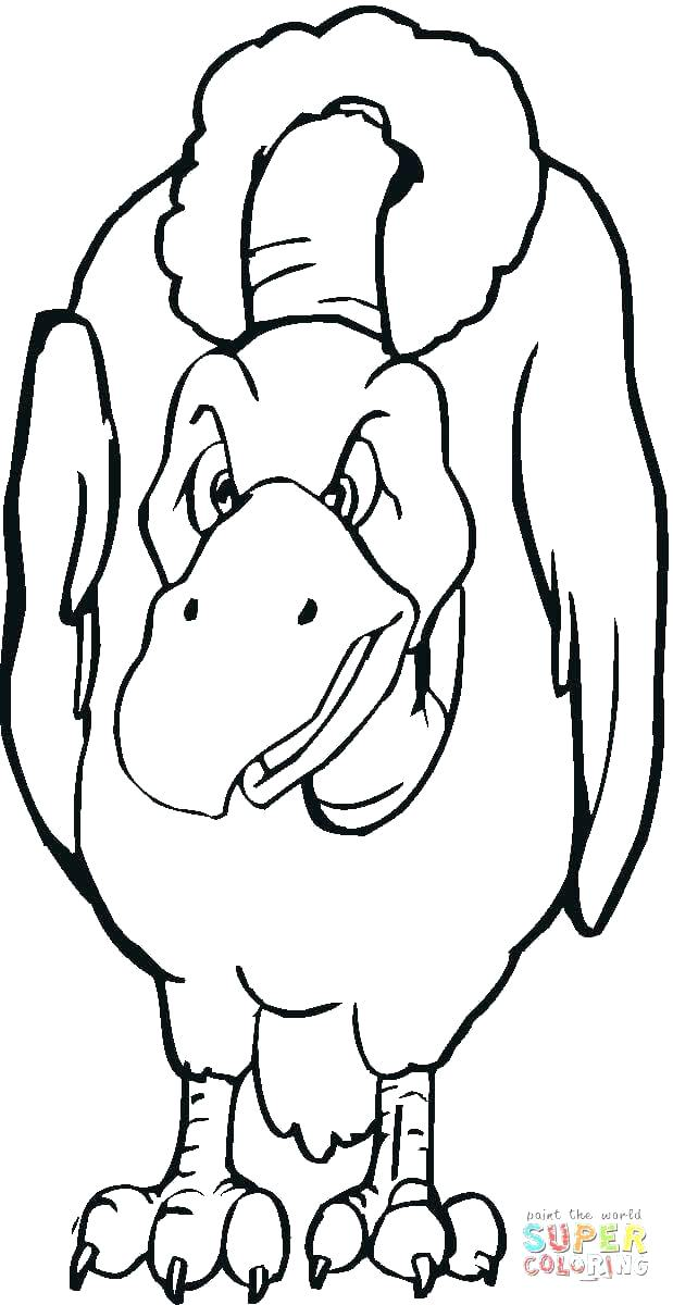 619x1200 Seagull Coloring Pages Vulture Coloring Pages Click The Vulture