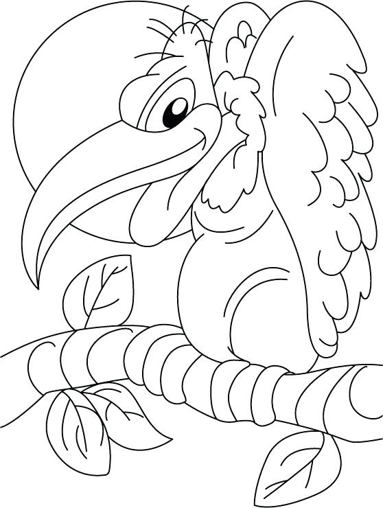 558x740 Turkey Vulture Coloring Pages Kids Coloring March