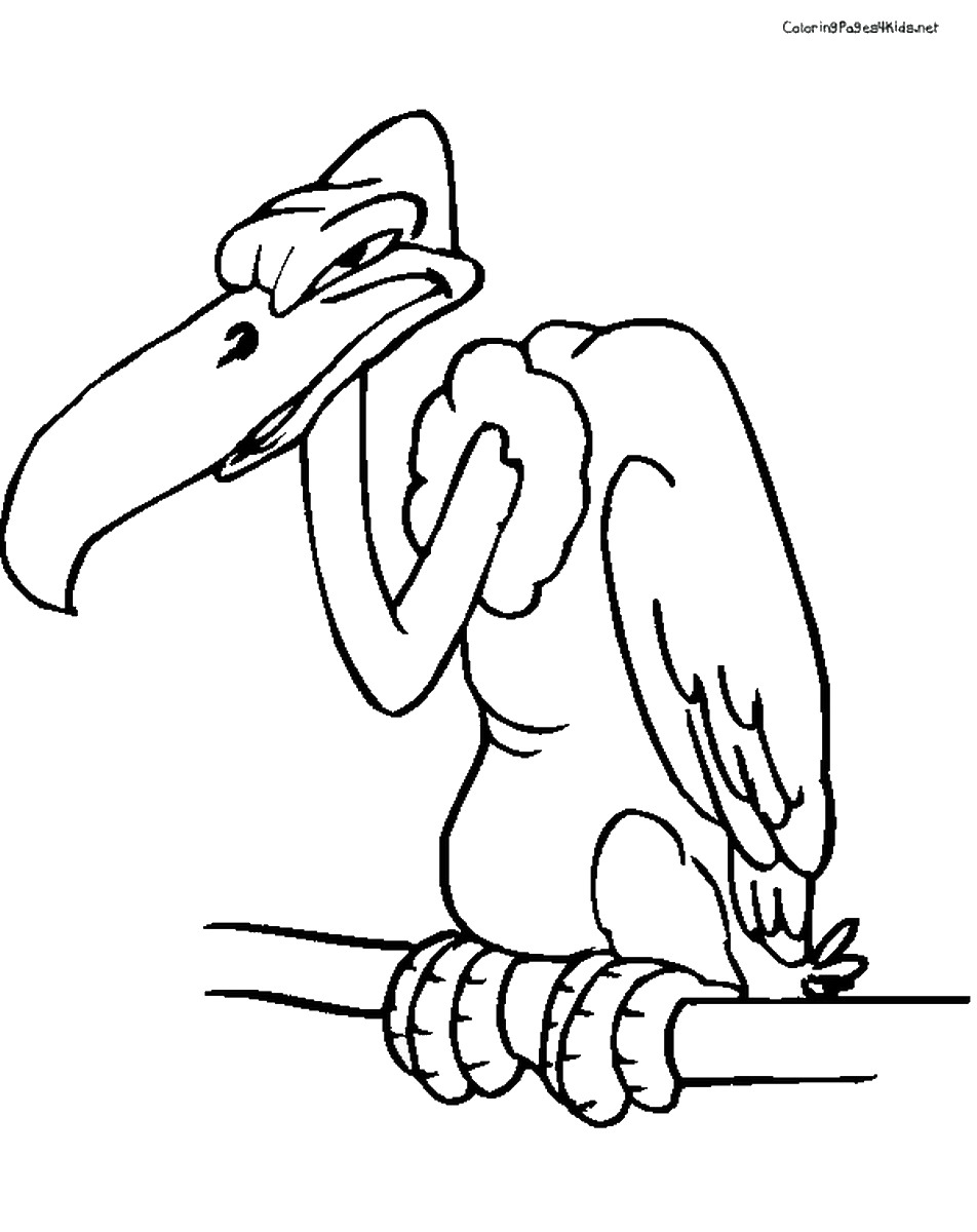 952x1200 Awesome Vulture Page To Color Collection Printable Coloring Sheet