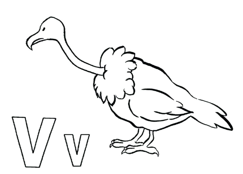 1024x732 Free Vulture Coloring Page To Print For Kids Animals King Pages