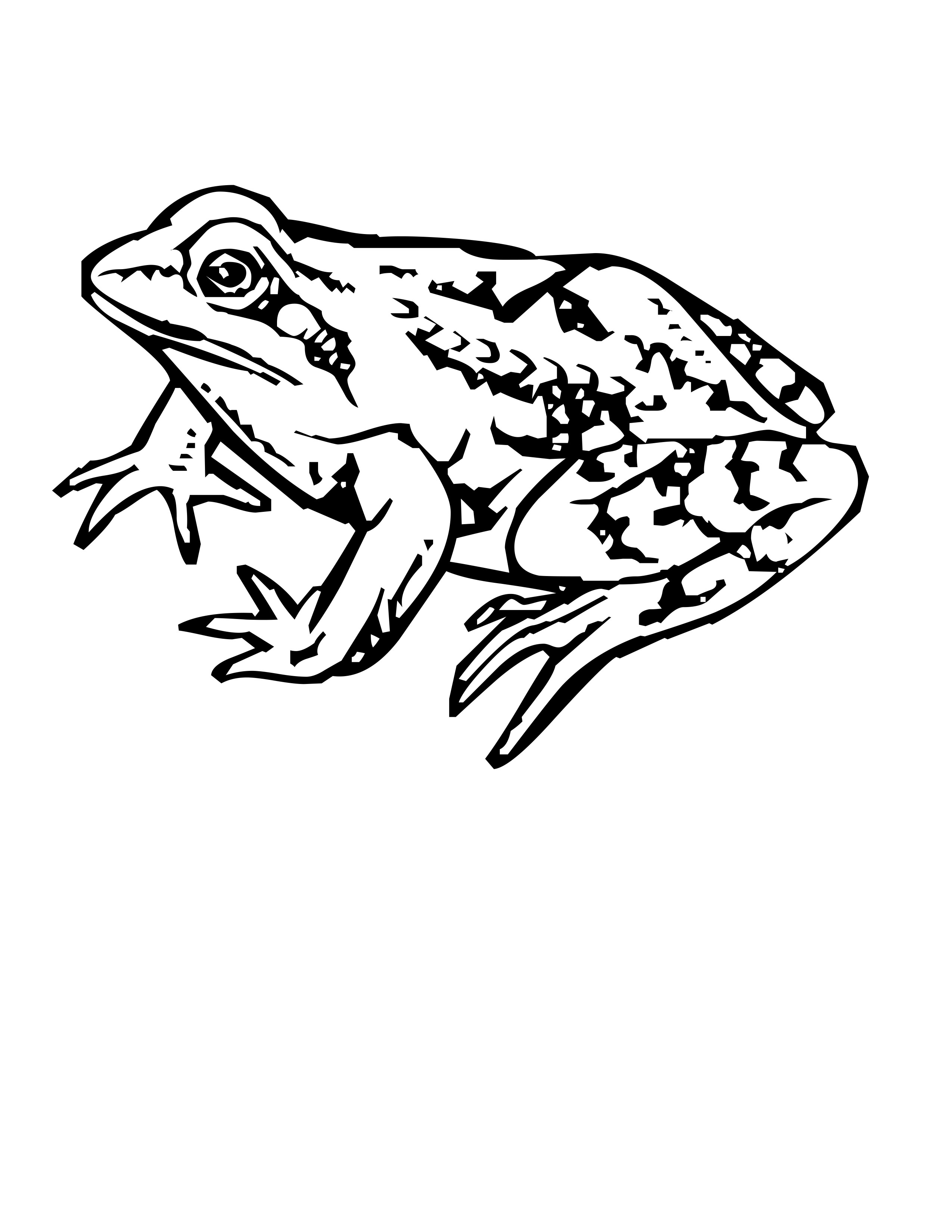 2550x3300 Free Frog Coloring Pages