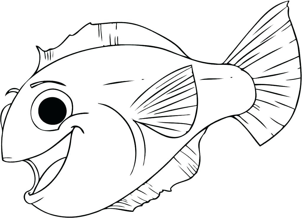 Walleye Coloring Page At Getdrawings Com Free For Personal Use