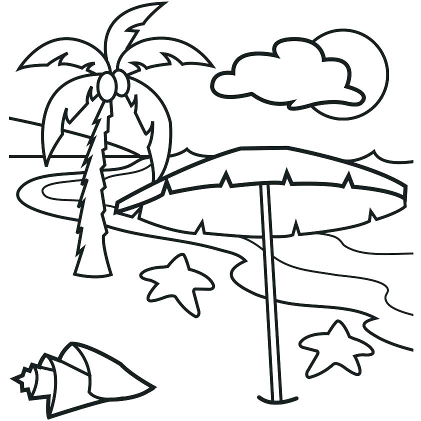 842x842 Palm Tree Coloring Page Palm Leaf Coloring Page Palm Tree Leaves
