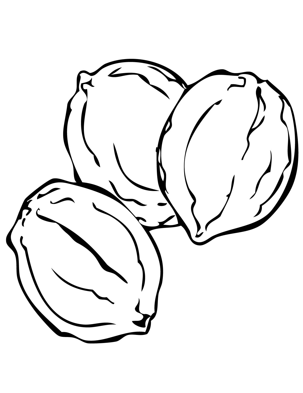 1275x1650 Walnut Coloring Page