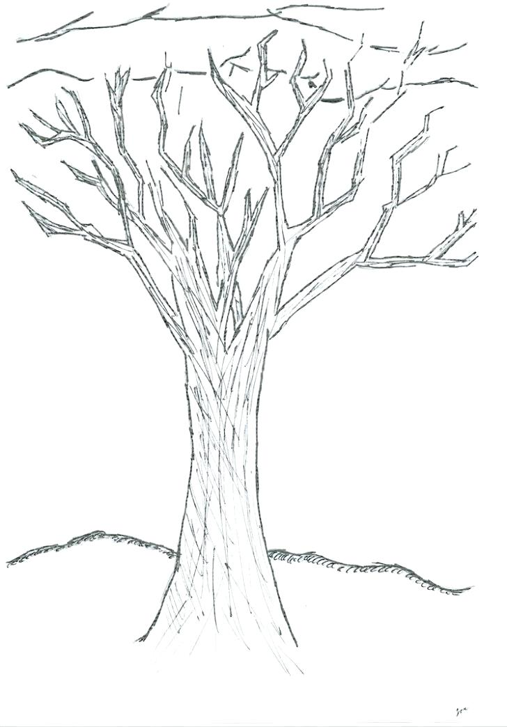728x1044 Winter Tree Coloring Page Gorgeous Tree On Winter Season Coloring