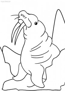 217x300 Printable Walrus Coloring Pages For Kids