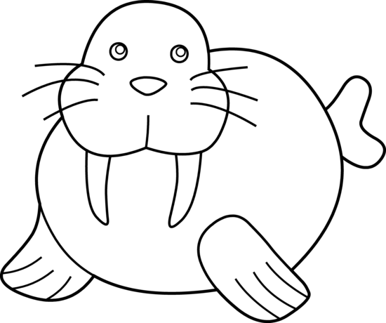550x460 Cute Walrus Coloring Page