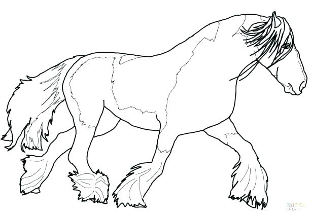 615x428 Coloring Pages Online For Adults Carousel Animals War Animal Book