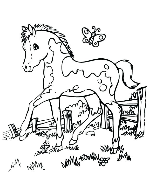 618x800 Coloring Pages To Print Free Printable Horse Sheets In Of Horses