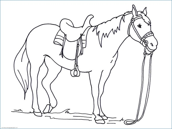 600x450 War Horse Animal Coloring Pages