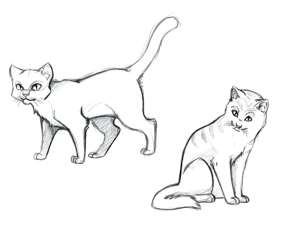 909x761 Warrior Cat Coloring Pages Free Printable Warrior Cats Coloring