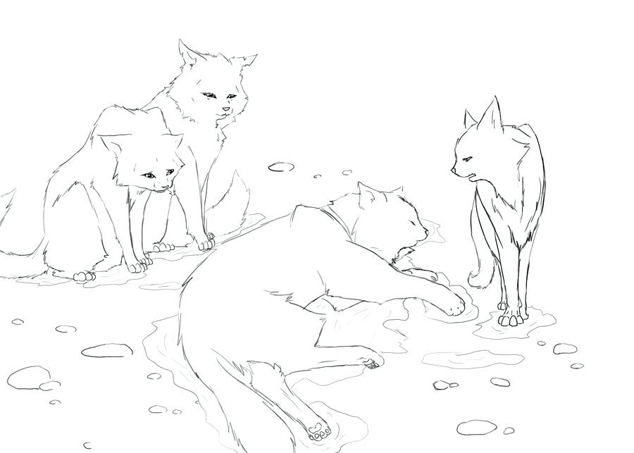 900x643 Warrior Cat Coloring Pages To Print Out Warrior Cat Coloring