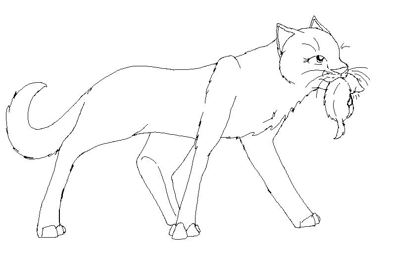 796x515 Warrior Cat Coloring Pages To Print Pictures Color
