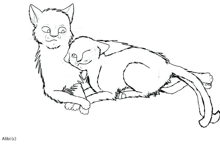 Warrior Cat Coloring Pages To Print At Getdrawings Com
