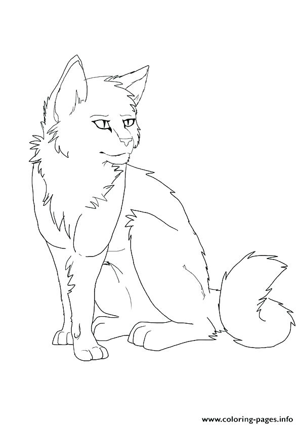 Warrior Cats Coloring Pages At Getdrawings Com Free For Personal