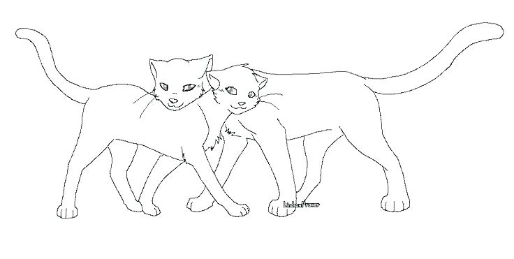 736x371 Astonishing Warriors Cats Coloring Pages