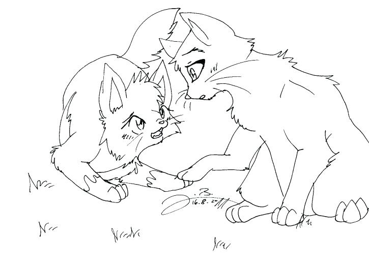 725x525 Warrior Cat Coloring Pages