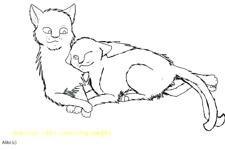 736x490 Warrior Cats Coloring Pages