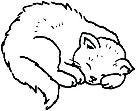 439x360 Cats Coloring Pages X Warrior Cats Kittens Coloring Pages