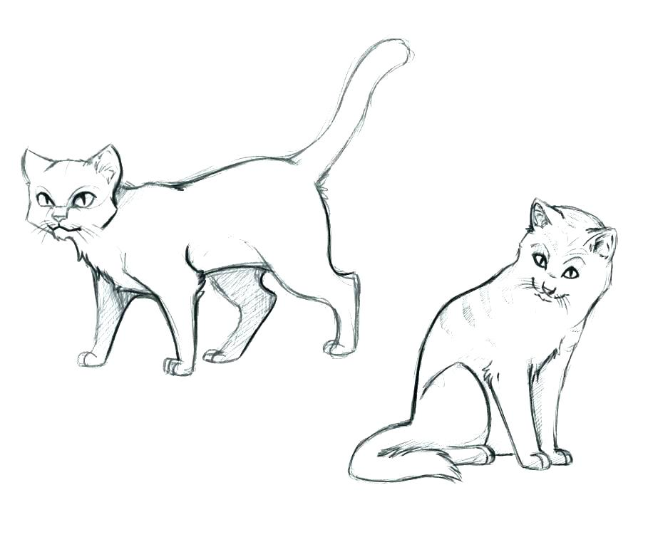 909x761 Coloring Pages Cats Cat Coloring Pages Online Warrior Cat Coloring