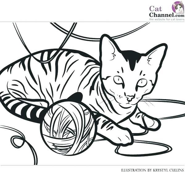 600x557 Fossil Coloring Pages Fossil Coloring Pages Cats Coloring Sheets