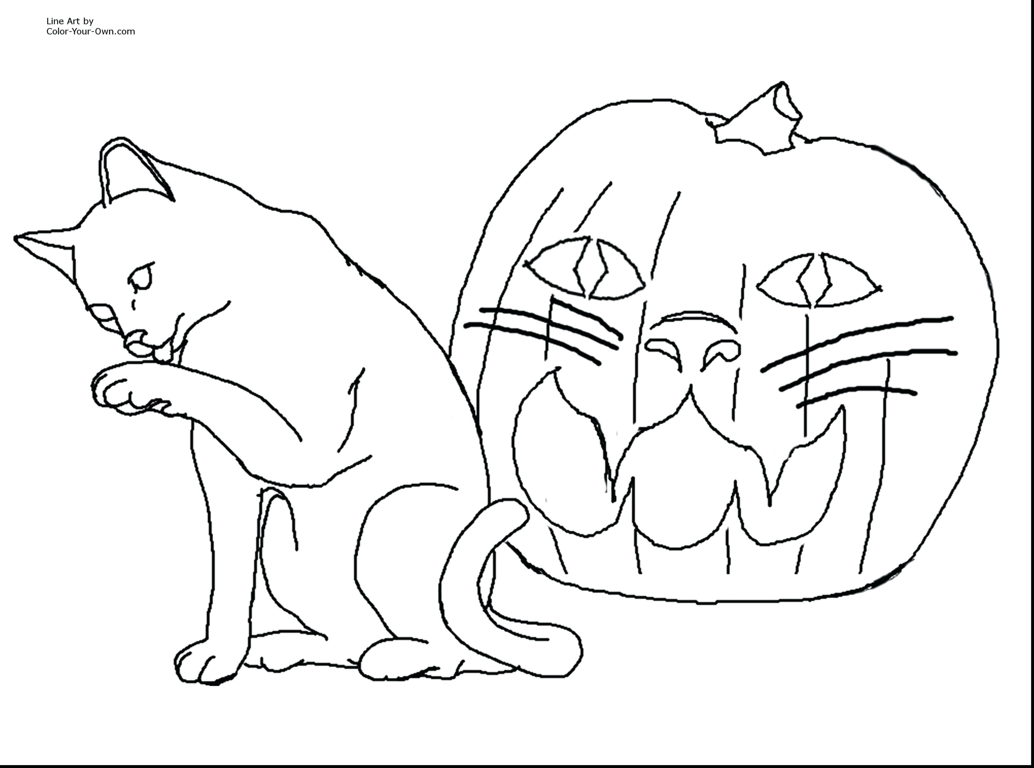 3555x2640 New Printable Warrior Cats Coloring Pages Printable