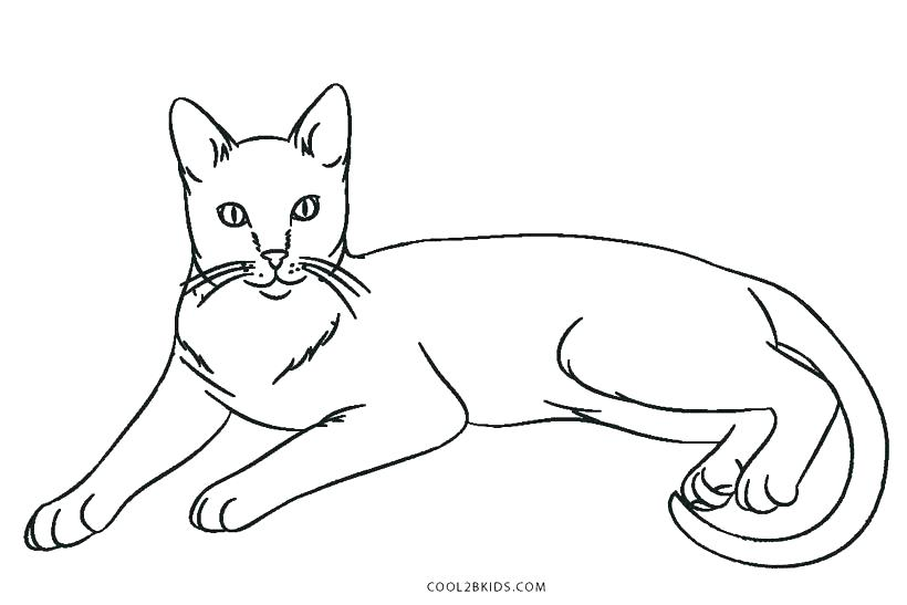 820x547 Black Cat Coloring Page Cat Coloring Pages To Print Warrior Cat