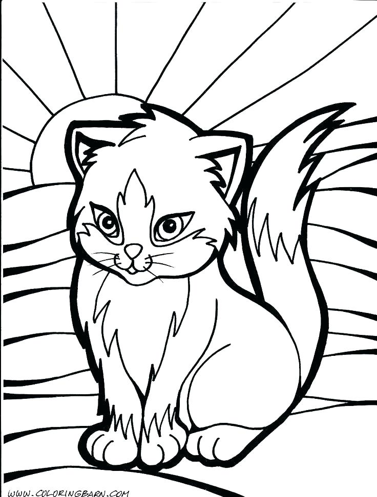 736x972 Warrior Cat Coloring Pages Warrior Colouring Pages Big Warrior Cat