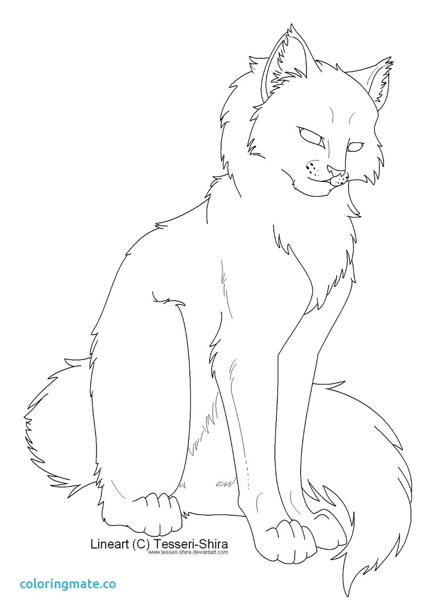 900x1238 Warrior Cats Coloring Pages Awesome Cute Cat Couple Picturesque