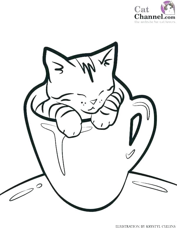 Warrior Cats Printable Coloring Pages At Getdrawings Free Download