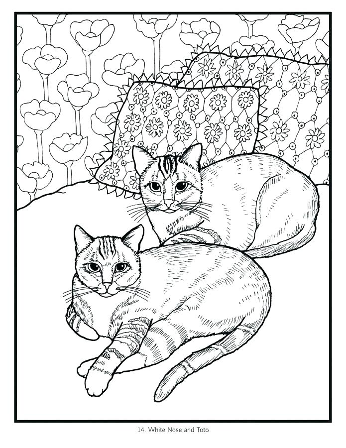 695x900 Cat Color Pages Printable Cat And Kitten Coloring Page Cats