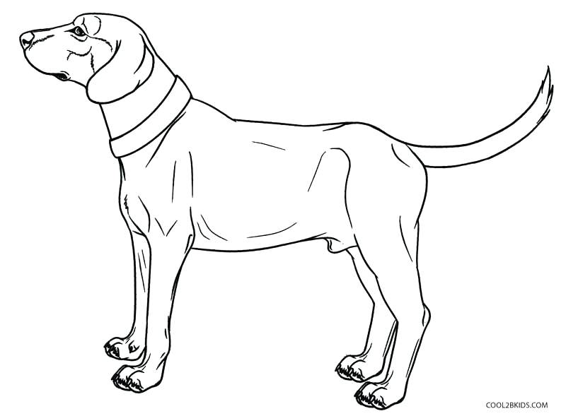 800x589 Dogs Coloring Pages Realistic Dog Coloring Pages Watch Dogs
