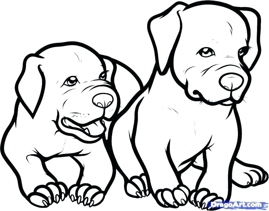 878x687 Dogs Coloring Page Coloring Page Egg Puppy Watch Dogs Coloring