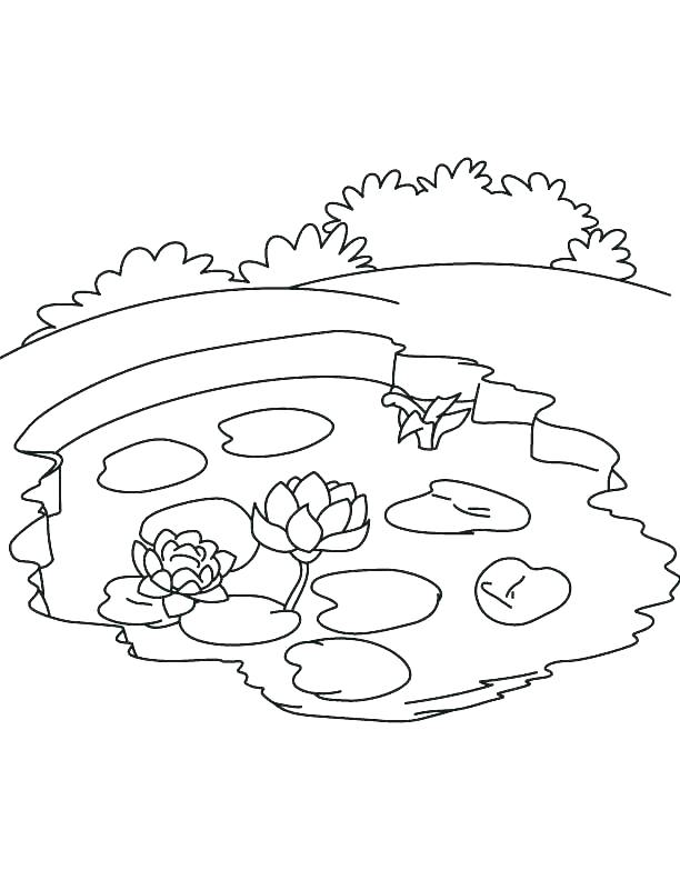 612x792 Water Bottle Coloring Page Coloring Pages Of Water Water Cycle