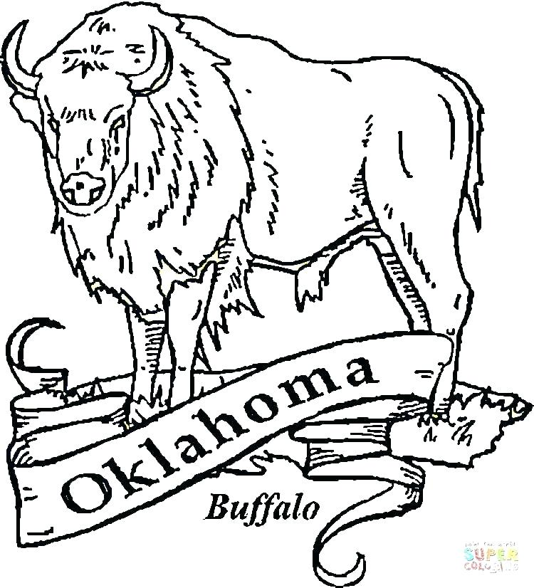 750x826 Buffalo Coloring Pages Soldiers Coloring Pages Buffalo Coloring