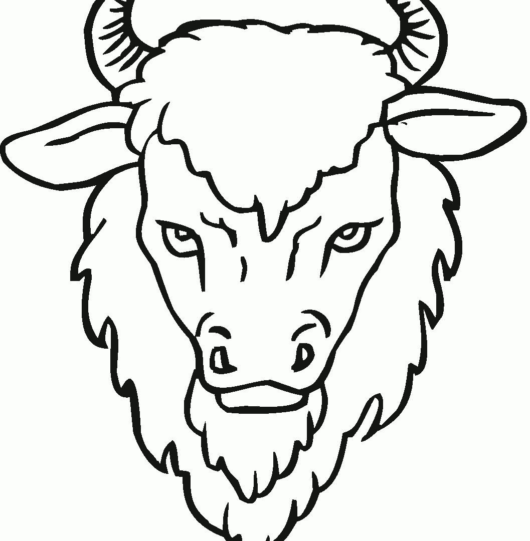1057x1080 New Bison Coloring Page Gallery Printable Coloring Sheet