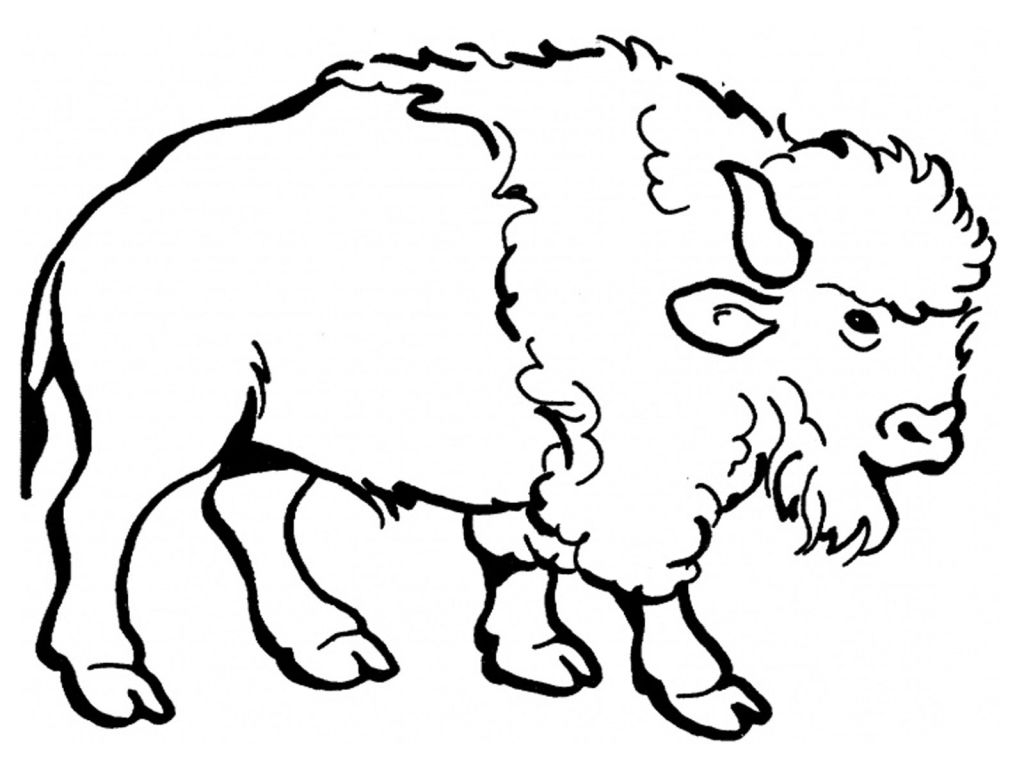1024x768 Water Buffalo Coloring Page Free Printable Pages