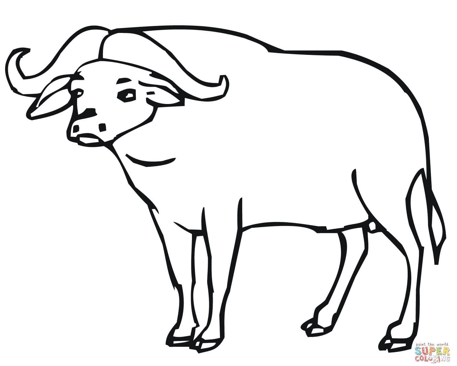 1500x1200 Water Buffalo Coloring Pages To Print Coloring For Kids