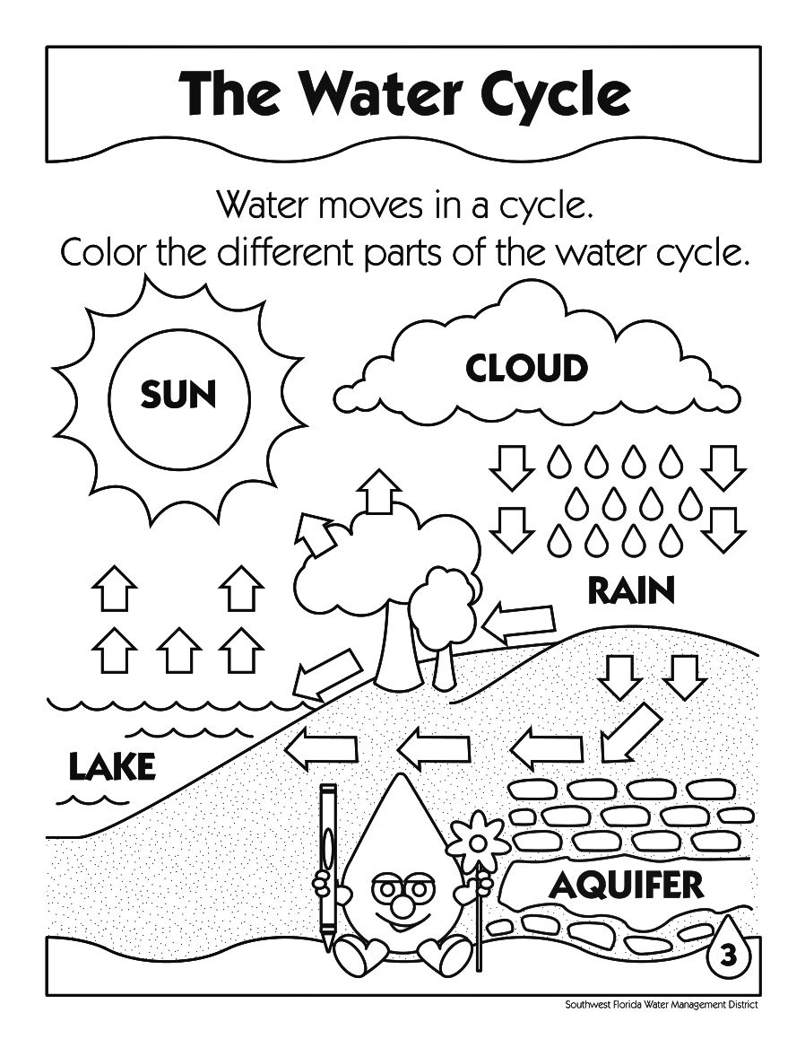 898x1158 Printable Water Cycle Coloring Pages