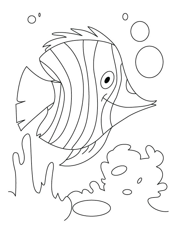 612x792 Just Add Water Coloring Pages Fish Flutter In Water Coloring