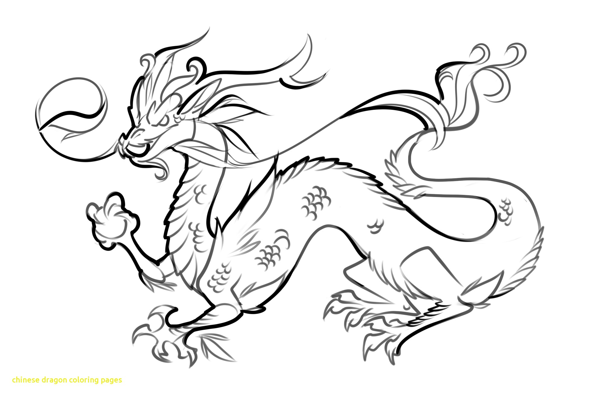 1990x1316 Fresh Chinese Water Dragon Coloring Page