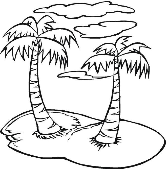 660x669 Palmtree Coloring Page