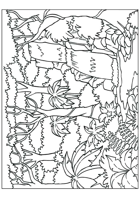 595x842 Waterfall Coloring Page Little Waterfall Coloring Page Rainbow