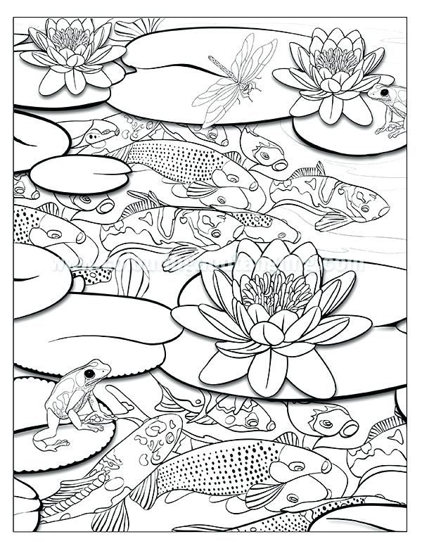 600x776 Waterfall Coloring Page Ponds Coloring Book Coloring Pages