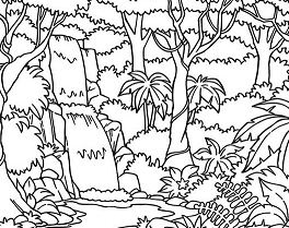 264x209 Waterfall In The Forest Coloring Page