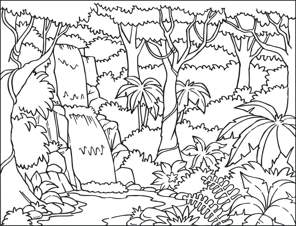 1024x780 Drawn Jungle Landscape Pencil And In Color Rainforest Waterfalls