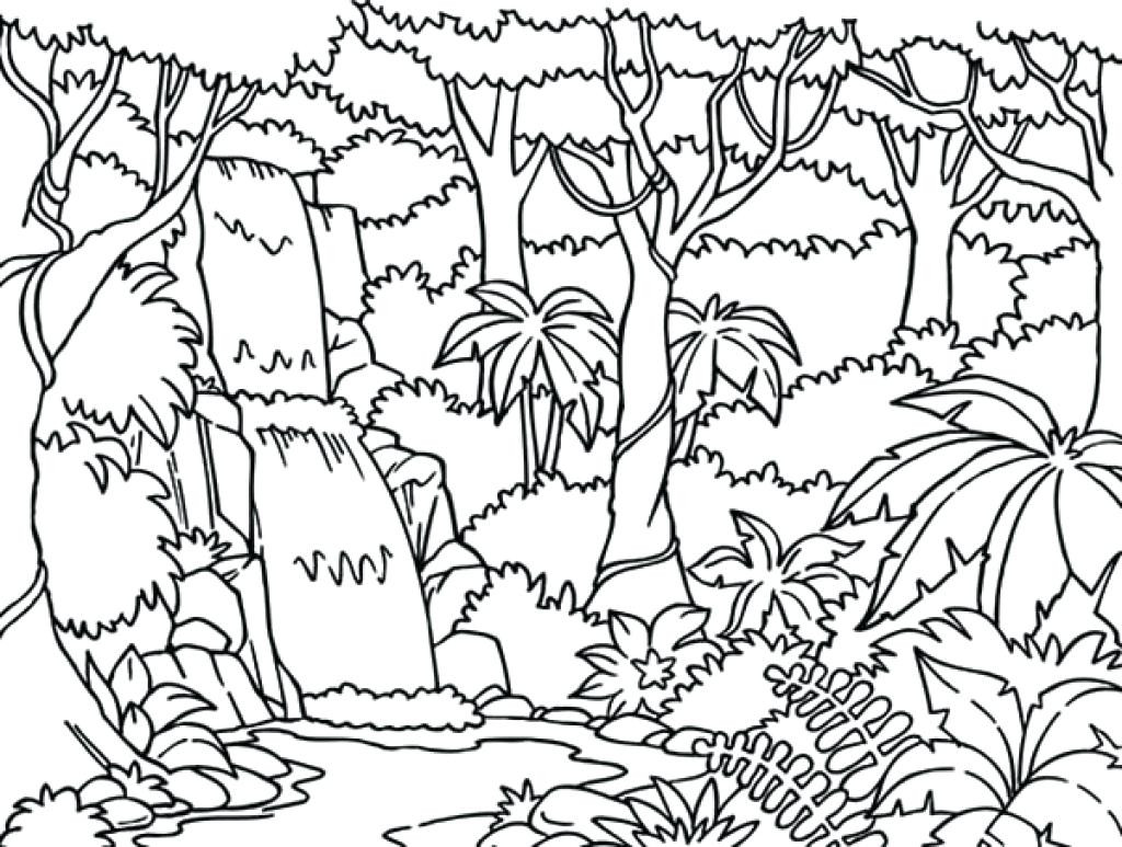 1024x773 Best Harmony Of Nature Adult Coloring Book Pg Color Pages