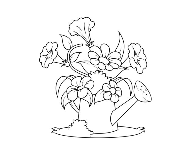 619x523 Watering Can Coloring Page Drawing Board Weekly